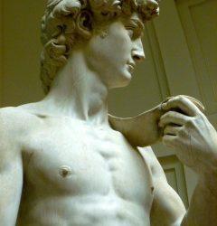 David: de beste ambassadeur van de schoonheid
